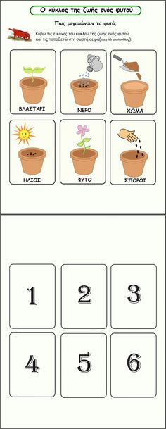 Preschool Education, Preschool Activities, Learn Greek, Sequencing Cards, Plant Crafts, Greek Language, Fabric Stamping, Plant Science, English Fun