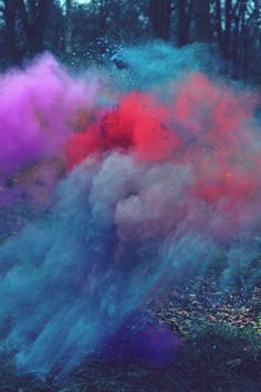 Coloured powder in the forest. Photographs by  Louis Lander-Deacon. Oh the colour!