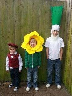 Four-year-old Aiden in traditional costume with six-year-old Charlie as a daffodil and eight-year-old Ellis-Anthony as a leek.  #St.DavidsDay #Wales #WelshFlag