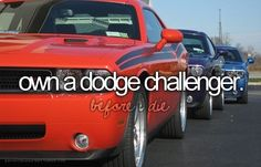 Before I die... Id like a 1970 Dodge Challenger in Plum Purple with black racing stripes please