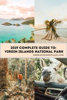 Click here for a complete guide to Virgin Islands National Park! We spent 10 blissful days in Virgin Islands National Park, here's everything you need to know before you go!  #virginislandsnationalpark #virginislands #stjohn #usvi #usvirginislands