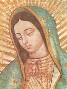 Mary shroud