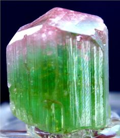 94.40 cts Amazingly Terminated Lustrous Rainbow TOURMALINE Crystal from Paprke