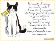 Cartolina virtuale per la festa della donna: per inviarla gratuitamente andare alla pagina http://www.amando.it/cartoline/compose.php?imageid=784