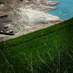 Transumanze in pausa pranzo #verde #moncenisio #lago
