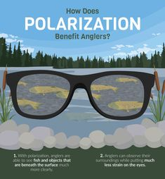 23c3c42c7933 How Does Polarization Benefit Anglers - Choosing the Right Fishing  Sunglasses Fishing Tackle Box, Best