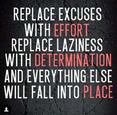 REPLACE EXCUSES WITH EFFORT REPLACE LAZINESS WITH DETERMINATION AND EVERYTHING ELSE WILL FALL INTO PLACE.
