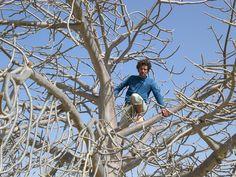Baobab+Cristian Climbing Boavista (Capo Verde) 02/2007