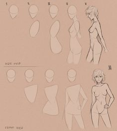 Library of Drawing Tutorials and References — drawingden: Body step_by_step. by mkw-no-ossan