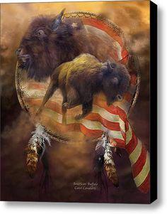 American Buffalo Stretched Canvas Print / Canvas Art By Carol Cavalaris