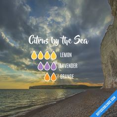 Citrus by the Sea - Essential Oil Diffuser Blend