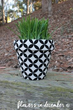 Etsy Black and white geometric pot  5.5 inches  by FlowersinDecemberDS, $22.00