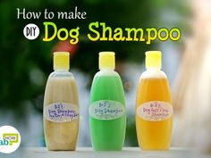 feat diy dog shampoo
