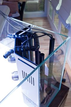 Rimless Cube - Page 3 - Reef Central Online Community Aquascaping, Aquarium Aquascape, Saltwater Aquarium Setup, Aquarium Sump, Aquarium Landscape, Aquarium Stand, Saltwater Tank, Marine Aquarium, Reef Aquarium