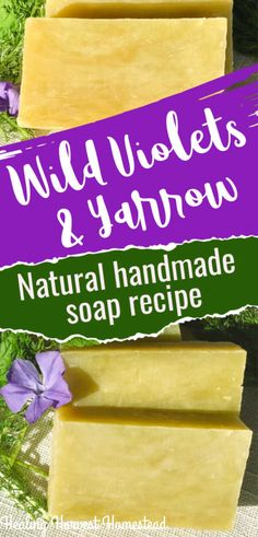 Wild Violet & Yarrow Skin Soothing Natural Soap Recipe: Hot Process Soap Making — Home Healing Harvest Homestead Handmade Soap Recipes, Soap Making Recipes, Handmade Soaps, Anti Aging Night Cream, Green Soap, Natural Health Tips, Home Made Soap, Diy Skin Care, Herbal Remedies