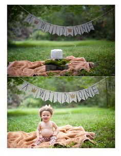 Where The Wild Things Are cake smash session by Southern Cotton Photography…