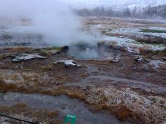 Geyser bubbling, golden circle, Iceland