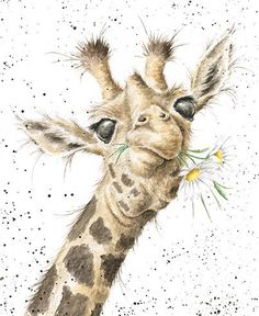 Birthday Flowers - Giraffe birthday card by Hannah Dale for Wrendale Designs Happy Birthday Giraffe, Happy Birthday Flower, Happy Birthday Greeting Card, Happy Birthday Images, Card Birthday, Birthday Wishes, Happy Birthday Beautiful, Birthday Sayings, Birthday Ideas
