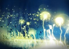 http://img5.visualizeus.com/thumbs/b7/85/photo,magicgarden,fairytale,flowers,garden,glow-b785e9edd4c6eb7f727c5d0c1aa22857_h.jpg