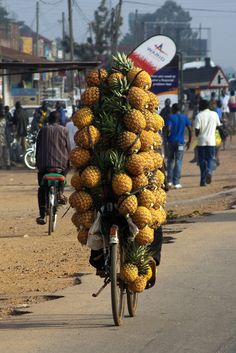After clearing the 80 or so speed bumps on the road we came to a small village on our way to Murchison Falls NP. That is where we saw this guy on his bike full with Pineapples tied together with old inner tube tire strips. Perfectly balanced as we saw him go for a fruit stall. Probably to offload at the market stand.