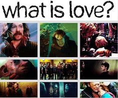 HP is an epic love story. period.