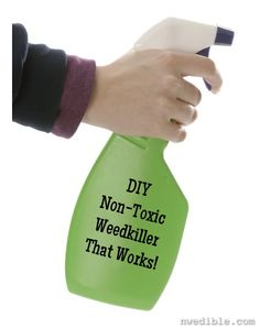 DIY Non-Toxic Weedkiller That Works