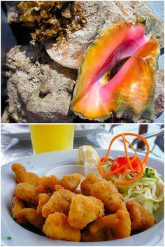 Ilhas Cayman: aberta a temporada de conch, o molusco mais amado da região