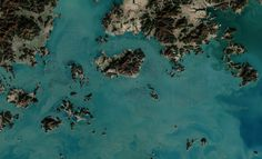 South Korean Seaweed Farms, From Space - Earth and Environmental Science, Marine Biology
