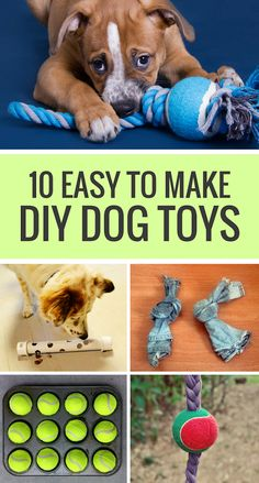 10 Easy to Make DIY Dog Toys. Looking for some simple toys to make for your dog? Here's 10 of my favorite homemade dog toys. #doglife #dogtoys #dogs #dogtips #diydog via @puppyleaks