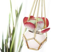 Mini Brass Hanging Planter | 23 Adorable DIY Ways To Show Off Your Plants