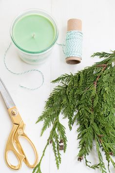 DIY Holiday Pine Scented Soy Candles