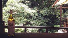 今日は暑いです 葉っぱもこころなしか白いです  久々に飲みたくなって#電気ブラン  オープンしております  #箕面 #箕面瀧道 #日本茶 #CHAnoMA #Minoo #Matcha #日本酒 #抹茶 #煎茶 #箕面ビール #古本#ブックカフェ#ひなたブック#箕面瀧道ガイド