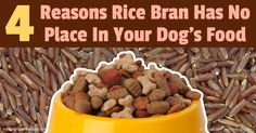 Pet food ingredient suppliers use marketing tricks to sell their products to pet food producers, just as pet food producers do to their consumers. http://healthypets.mercola.com/sites/healthypets/archive/2016/12/05/avoid-dog-food-containing-rice-bran.aspx