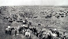 Cattle Drive Up the Chisholm Trail over Kansas