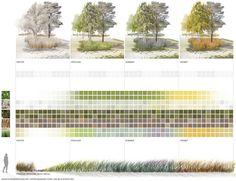 Vegetationsperioden mit Farb- und Blühaspekten  TOPOTEK 1