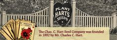 "Chas C. Hart Seed Company - old-fashioned seed house with beautiful vintage packets, .PDF catalog says it is ""bulk"" but they do sell individual packets as long as the minimum total order is $150"