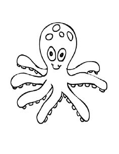 Small Octopuses Funny