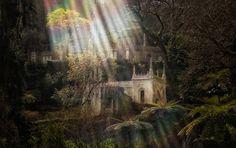 Quinta Da Regaleira: het paleis van mysteries