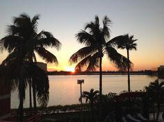 Sofitel miami | A Miami wedding venue | www.partyista.com Miami Wedding Venues, Florida, Celestial, Sunset, Outdoor, Places, Outdoors, Sunsets, Outdoor Games