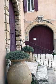 Century old olive pots as planters and deep purple doors and shutters in France.