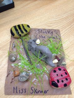 Sticks, Stones & Sparkly Pinecones ...Explore, Create & Learn : Sliding into a Snail Inquiry!