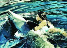 Islamorada, nas Florida Keys, permite nadar com golfinhos em um ambiente lindo e natural!/Incredible places in Florida: in Islamorada, Florida Keys, it is possible to swim with dolphins in natural lagoons.