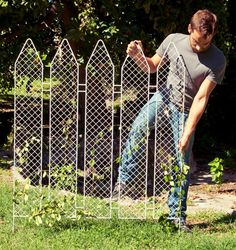 Plant The Fence  |  What about adding picket fence panels for some things to grow on…?