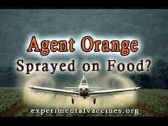 EPA Approves Agent Orange for GMO Crops (video 2014) ... ... BIOLOGICAL WARFARE ON AMERICANS!!! JUST LIKE THE US DID IN VIETNAM!!!