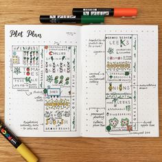 My allotment plans for 2017