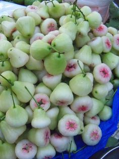 Macopa! Or Rose apples #fruit I used to eat this! Philippines!