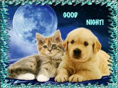 ☆☆☆ Good Night sister and all,God bless,have a restful sleep,xxx ☆☆☆