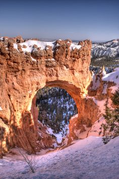 Bryce National Monument, Utah, Arch www.homesahwatukee.com  Bryce National Monument, Utah, after a winter storm, winter 2010 Hoodoos and arches, View into the canyon. Hell of a place to lose a cow!
