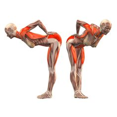 Forward bend with hands against back - Ardha Uttanasana - Yoga Poses   YOGA.com