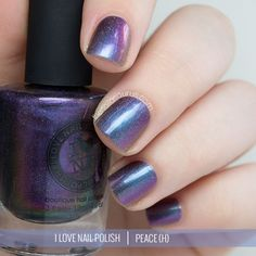 ILNP Fall Collection: My Picks
